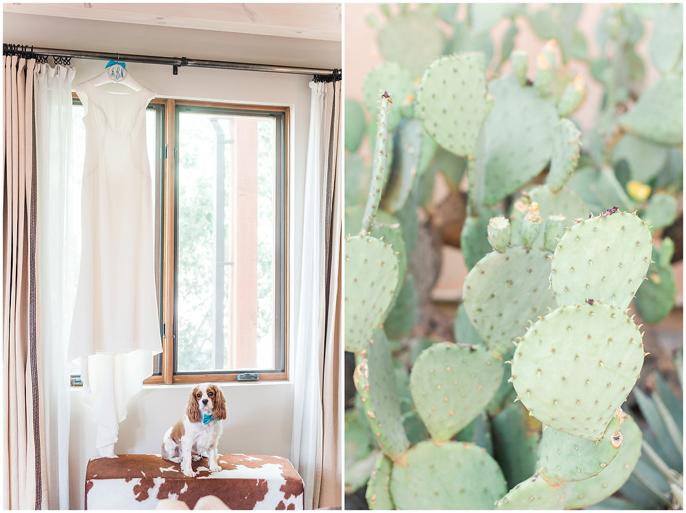 Four Seasons Santa Fe. Four Seasons Santa Fe Wedding. Santa Fe Wedding Photographers. Santa Fe Wedding. New Mexico Wedding Photographer. New Mexico Wedding. Elopement. New Mexico Elopement. Santa Fe Elopement. South Western Wedding. Cowboy Wedding. Cactus Wedding. Dogs at Weddings.