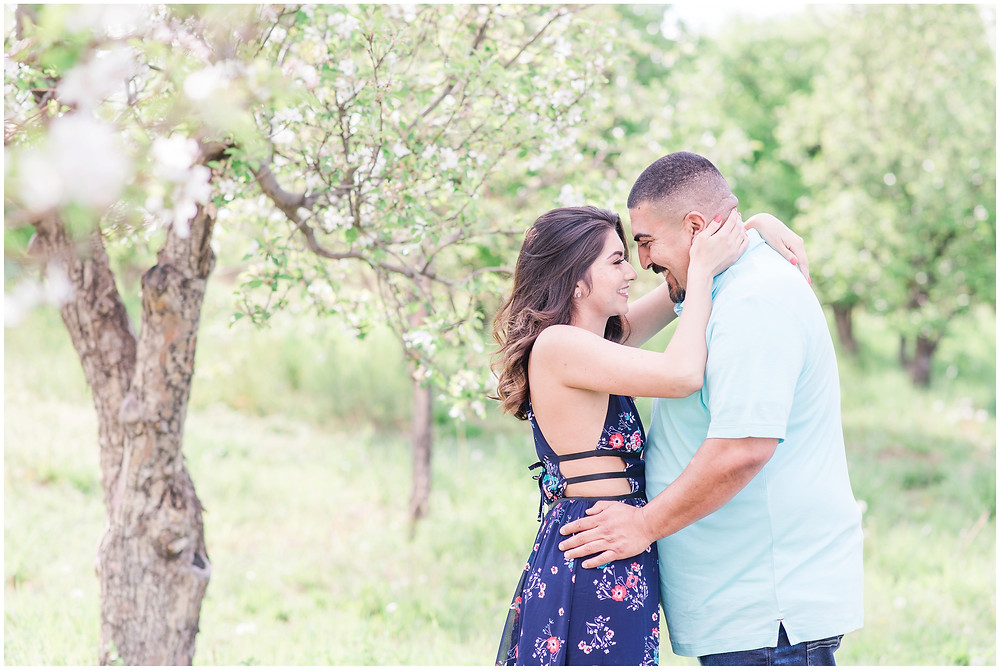 spring engagement in corrales, new Mexico. Albuquerque wedding photographer Maura Jane Photography. Couples photos in Corrales, New Mexico. Engagement session in apple orchard.