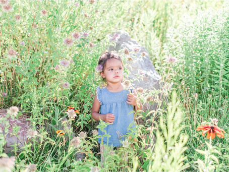 Best Of: 2020 Wildflower Minis | Albuquerque Portrait Photographers