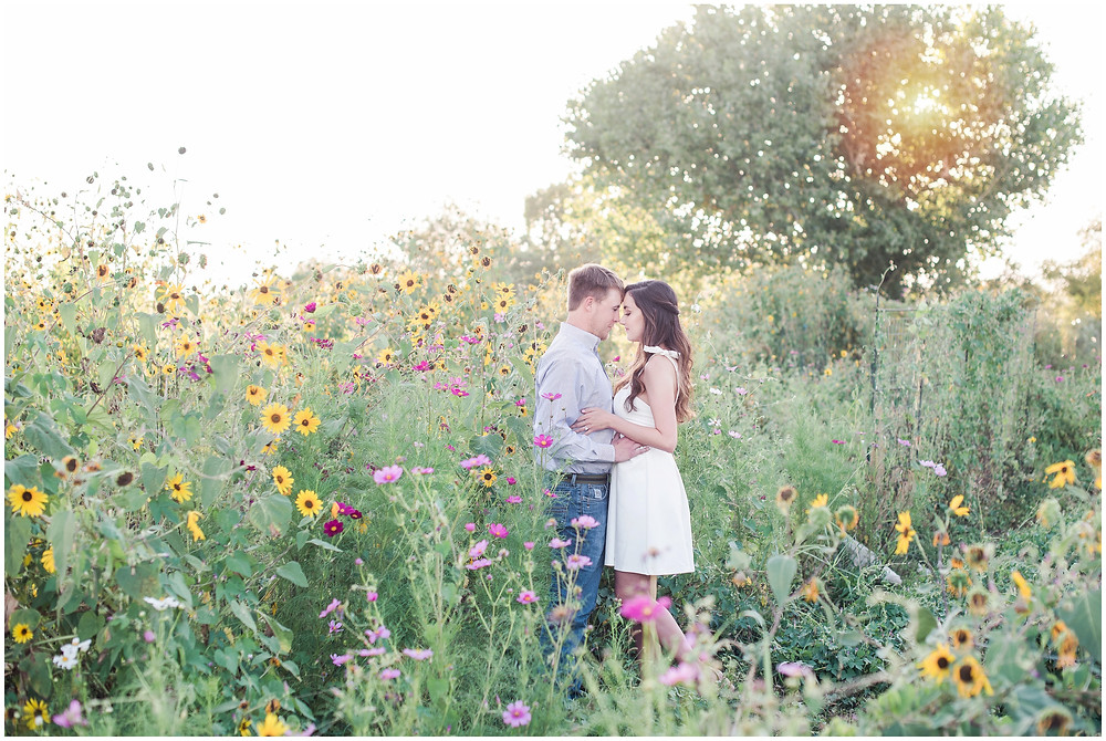Sunflower engagement session. New mexico wedding photographer. Flower couples photos