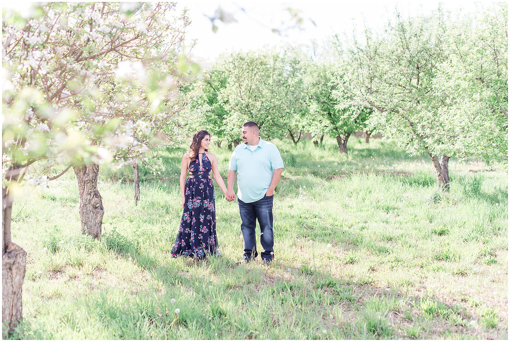 Flower tree engagement in corrales, new Mexico. Albuquerque wedding photographer Maura Jane Photography. Couples Couple walking in apple orchard.