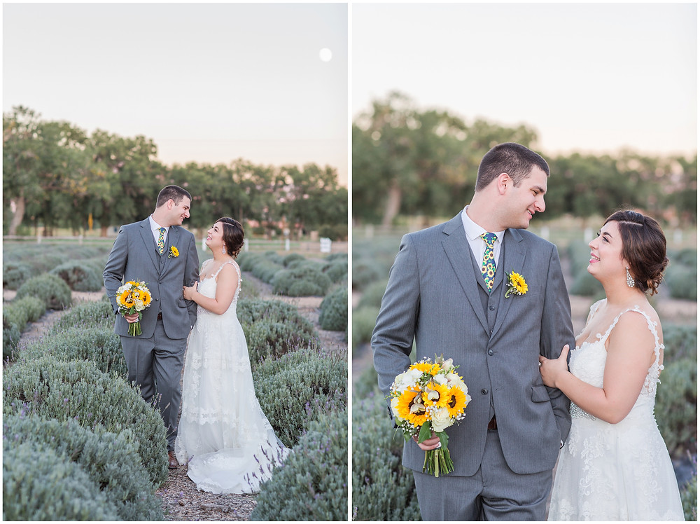 Wedding at Los Poblanos. Summer wedding New mexico. Outdoor wedding venue albuquerque. New Mexico Wedding Photographer. lavender field wedding