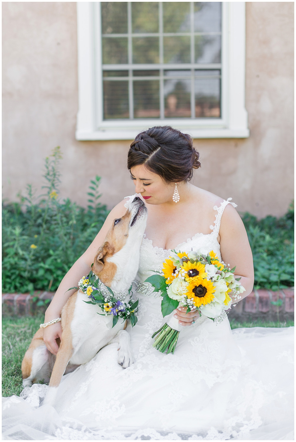 Wedding at Los Poblanos. Summer wedding New mexico. Outdoor wedding venue albuquerque. New Mexico Wedding Photographer. bride and her dog