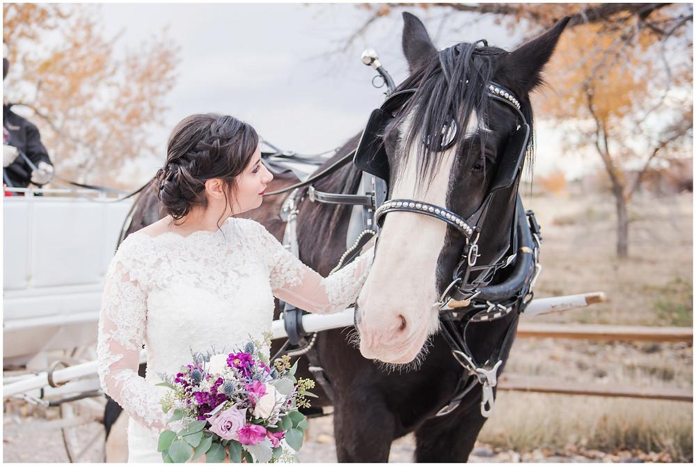 Wedding at Tamaya. New Mexico Wedding Photographer. Fall Wedding in Albuquerque. Maura Jane Photography. Long sleeve wedding dress. Winter wedding. Purple wedding bouquet. Mountain wedding photo. Fall wedding