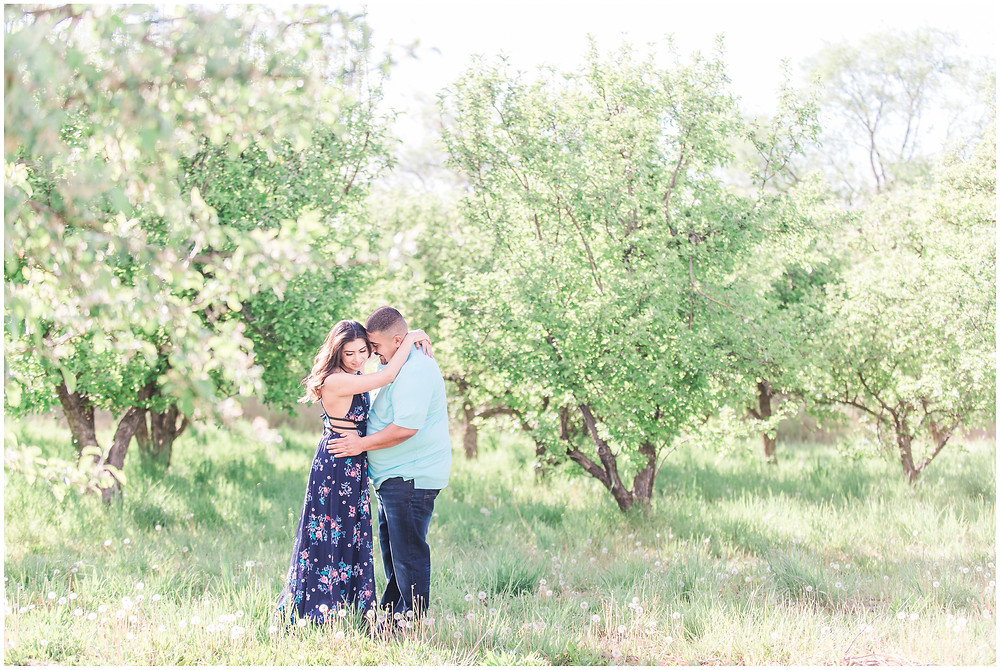 Flower tree engagement in corrales, new Mexico. Albuquerque wedding photographer Maura Jane Photography. Outdoor engagements session in blue outfit, long blue dress.