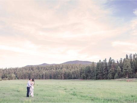 Liz + Kayvan | An Enchanted Engagement in Vallecitos | Santa Fe Wedding Photographers