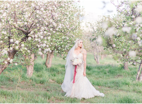 Nicole | Spring Orchard Bridal Session in Corrales, New Mexico | Albuquerque Wedding Photographers
