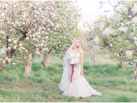 Nicole   Spring Orchard Bridal Session in Corrales, New Mexico   Albuquerque Wedding Photographers