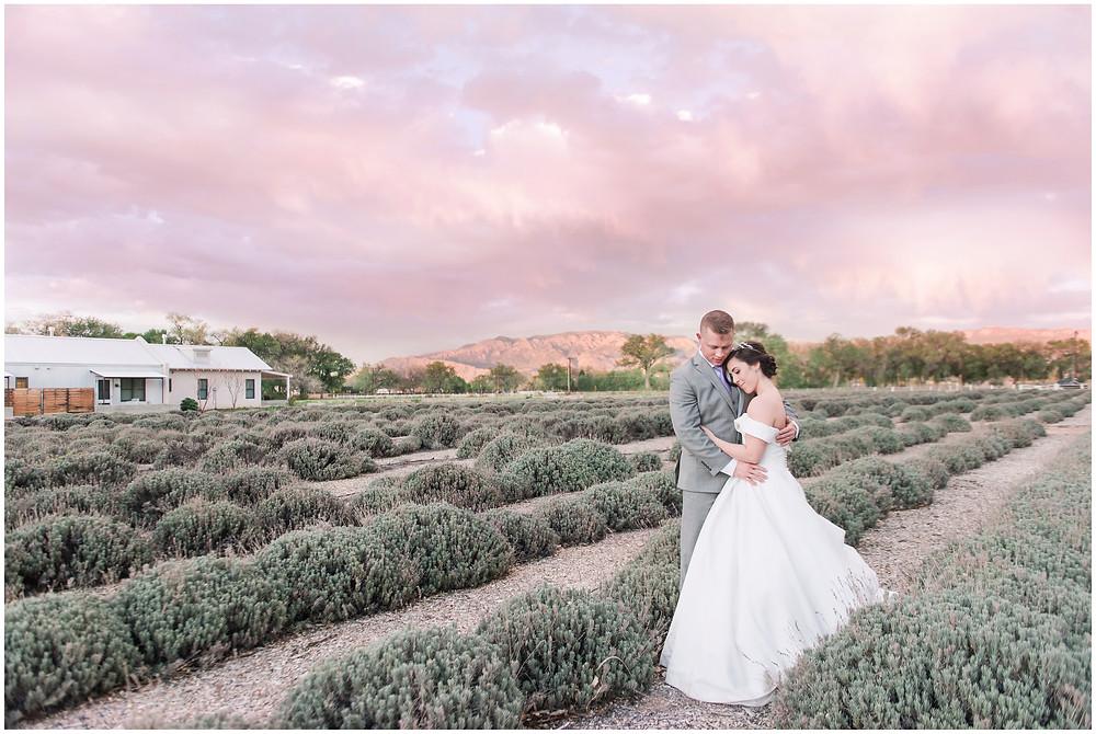 Sunset Wedding. Mountain Wedding. Albuquerque Wedding. Where to get married in Albuquerque. Los Poblanos Wedding Venue. Albuquerque Wedding Photographer. New Mexico Wedding Photographer. Los Poblanos Lavender Farm.