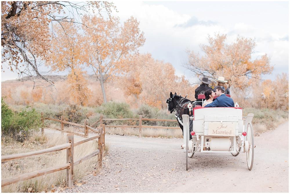 horse drawn carriage at tamaya