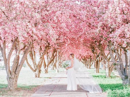 Santa Fe Bridal Session Amongst The Blossoms | Santa Fe Wedding Photographers