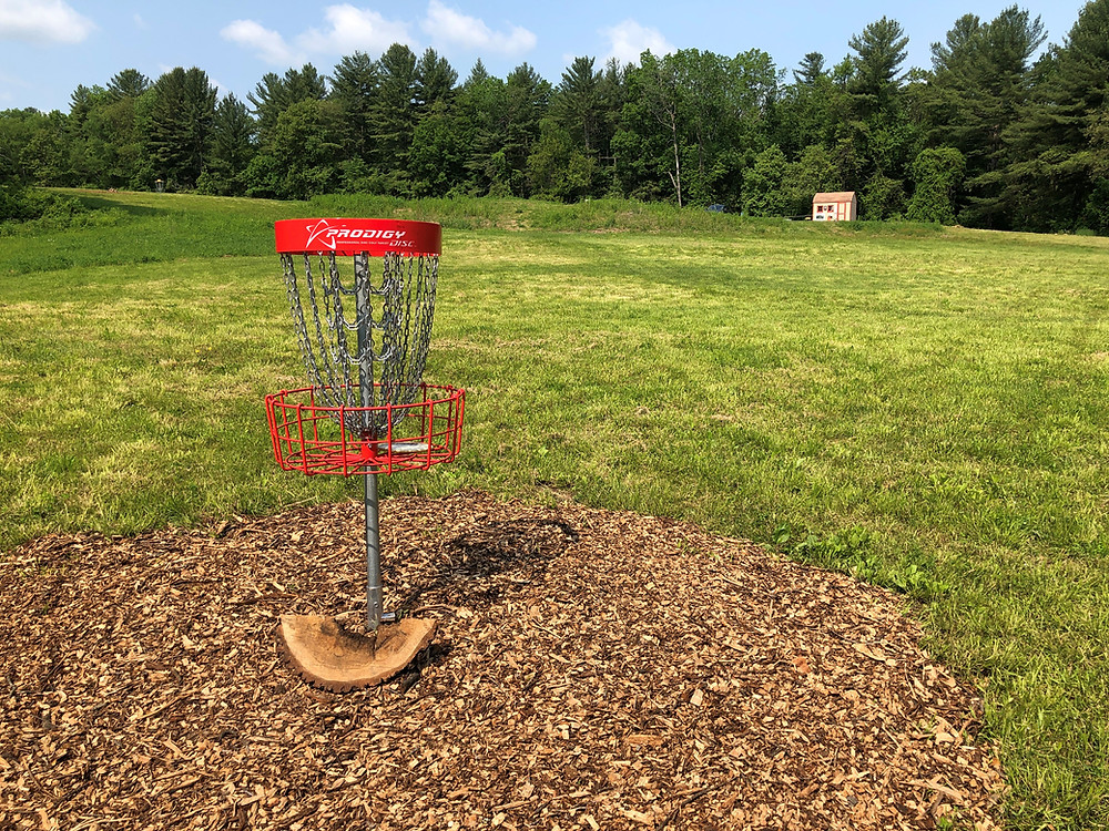 Meadows hole nine, new Prodigy basket