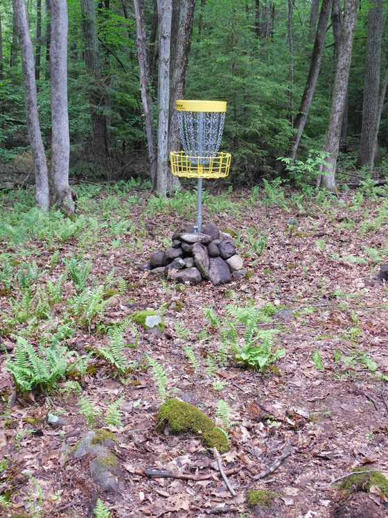 The Babbling Brook, Part I: Hole Six