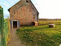 Pension chien chat Bretagne Mayenne 53