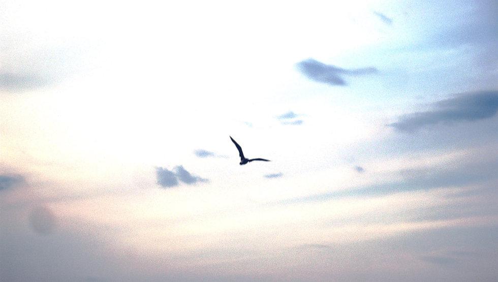 Spazio SoStare_to fly