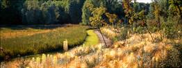Jardin de Méry sur Oise ©Pascal-Cribier