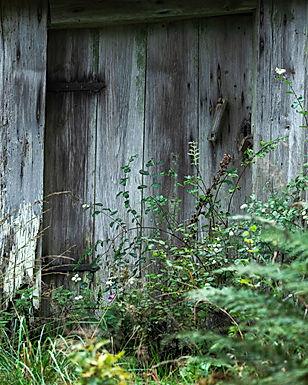 Dörren till stugan
