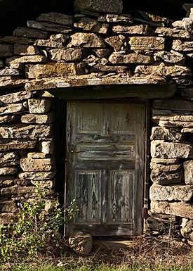 Dörren till vår överlevnad