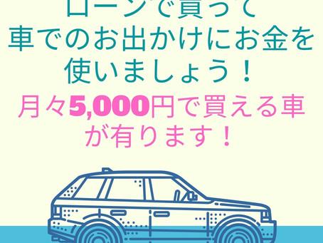 全部月々五千円で買える車です!