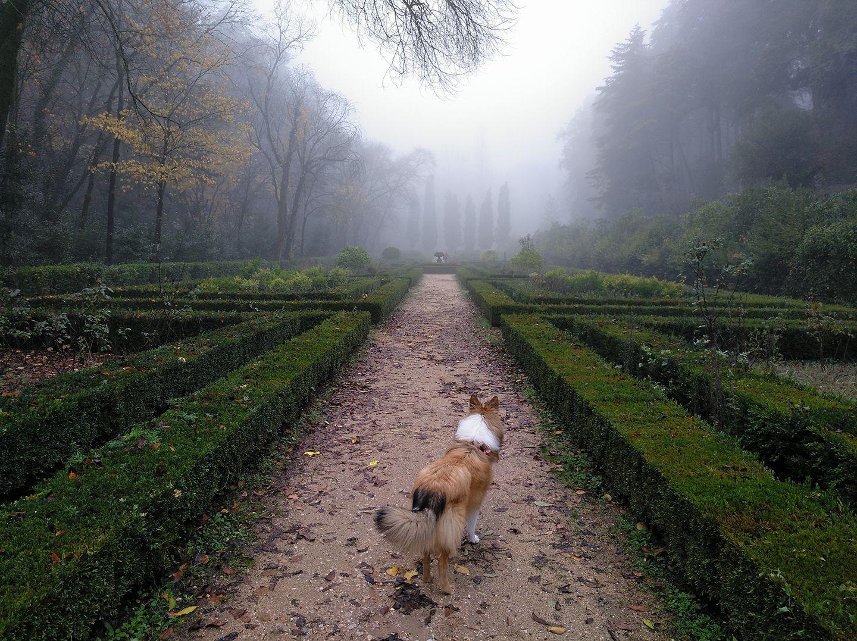 Tomar Portugal Sculpted Gardens.jpg