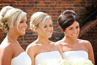 The Bridesmaids.jpg