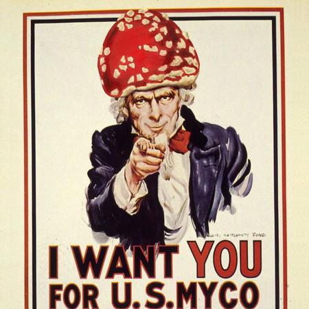 U.S. Myco Corps