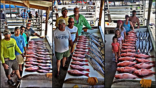 Snapper Fishing Kingfish Cobia Port Isabel South Padre Island