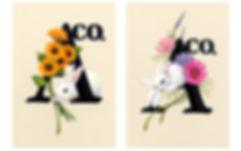 株式会社ヒダマリ,ヒダマリ,HIDAMARILtd.,HIDAMARI,Aco,アコ,ロゴ,akikosekimoro,関本明子