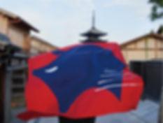 印染杉下,京都,ブランディング,ロゴ,logo,akikoskimoto,関本明子