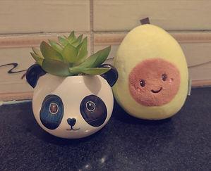 Panda+avocado