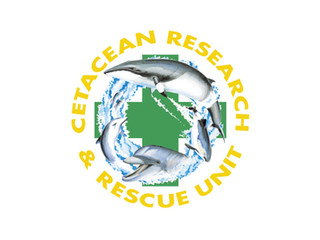 Cetacean Research & Rescue Unit (CRRU)