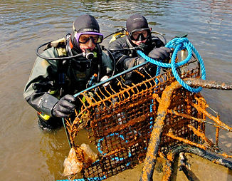 Supermarket trolley marine litter