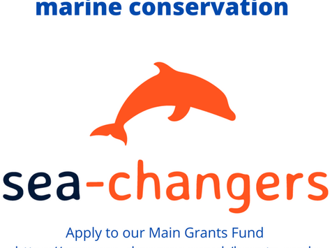 Our main grant fund it open for application
