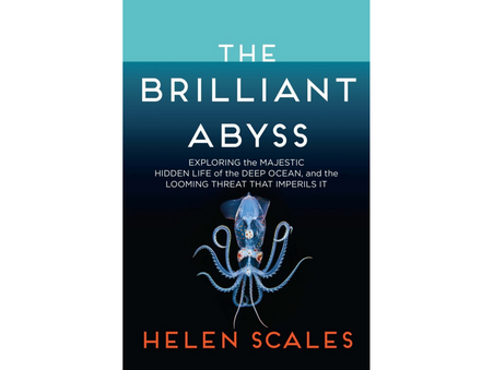 Dive into 'The Brilliant Abyss'
