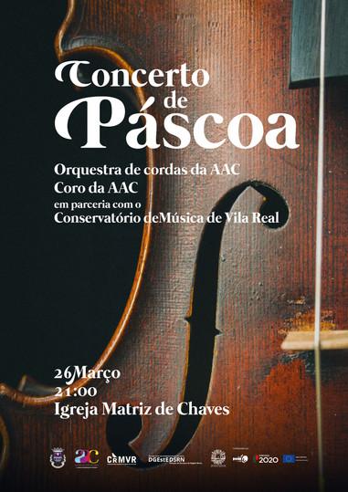 orquestra de cordas.jpg