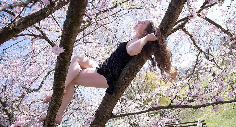 Acroyoga Cherry Blossom Photography