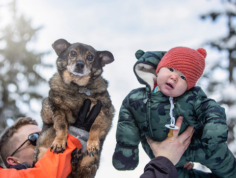 7 Tips on Capturing an Amazing   Family Day Snow Photoshoot