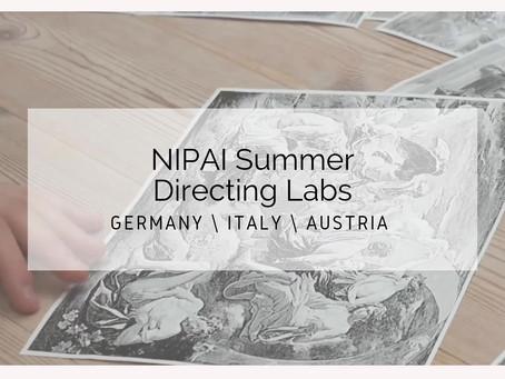 Directing Labs at NIPAI