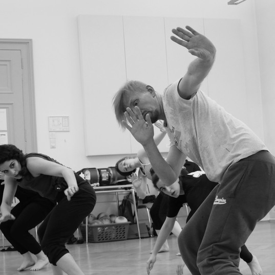 G.Ostrenko's Movement Training in Austria