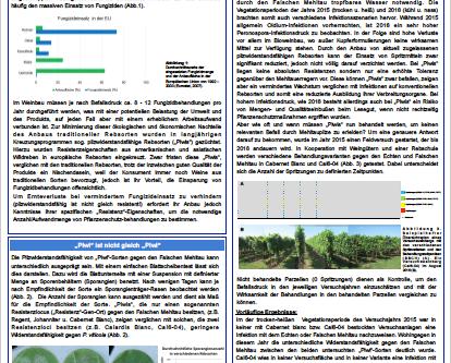 Neubepflanzung #2: Warum PiWi-Sorten?