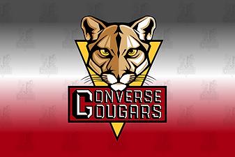 Converse Webstore Logo.png