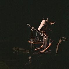 When vacas fly (foto: Mariana Smania)