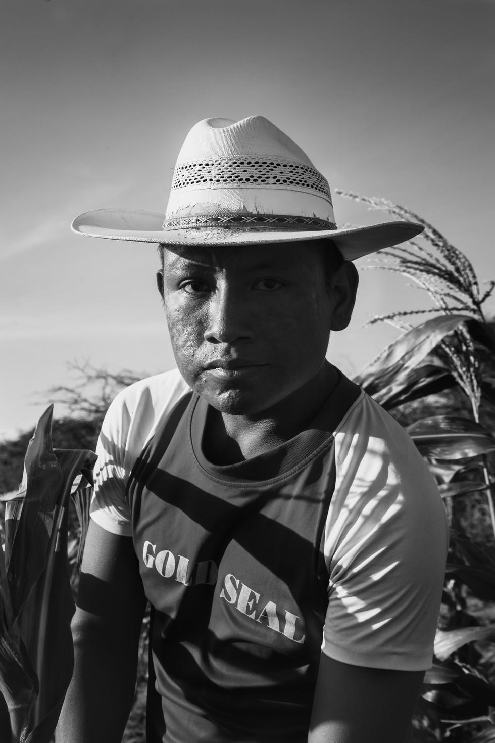 Guajira 2016.jpg