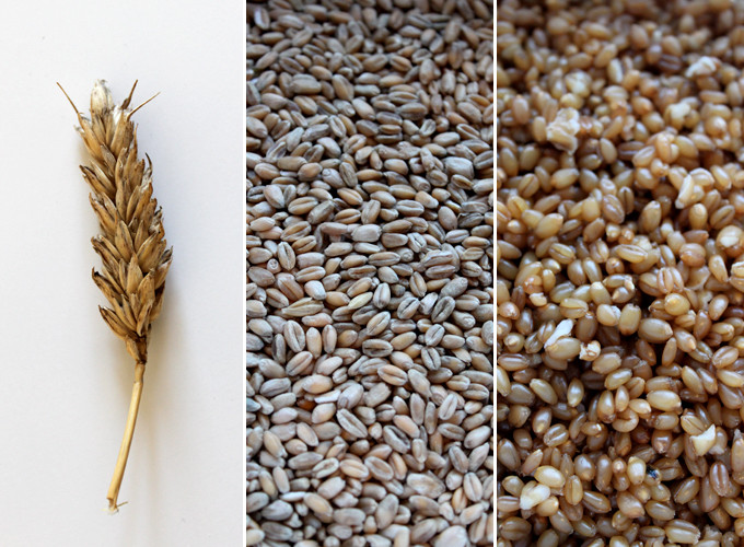 Wheat berries!