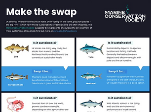 An inforgaphic from the marine conservation society about the good fish guide. The inforgraphic is about swapping fish you eat for more sustainable options