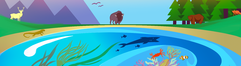 Conservation banner_bottom.png