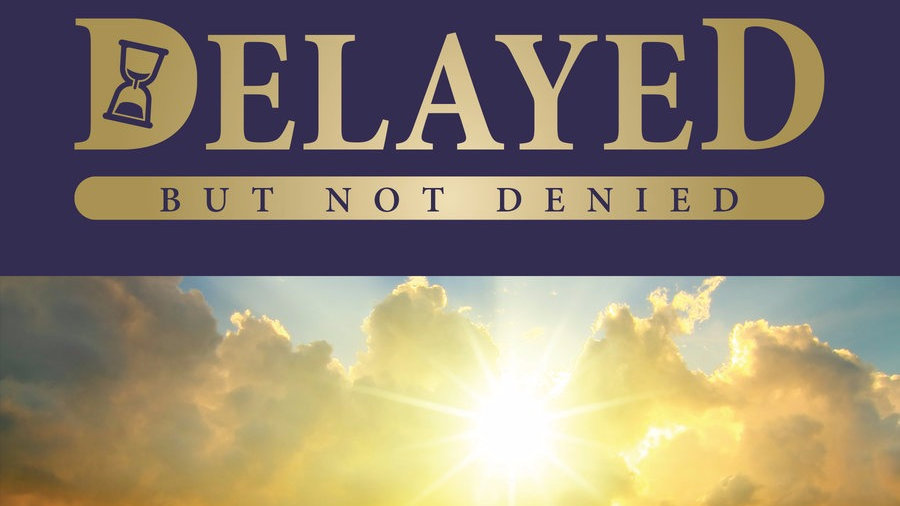 Delayed But Not Denied: 20 Inspirational Stories of Life and Resiliency