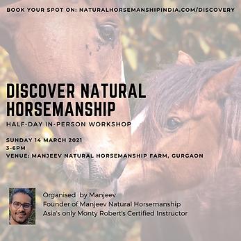 discover natural horsemanship.png
