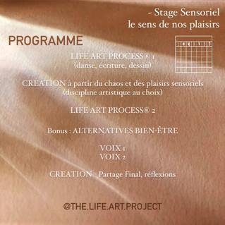 SENSORIEL 3 - programme.MOV