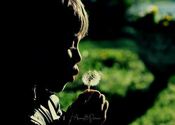 AuroreB.Pictures - Innocence